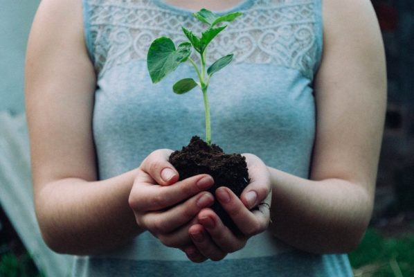 植木を持っている女性